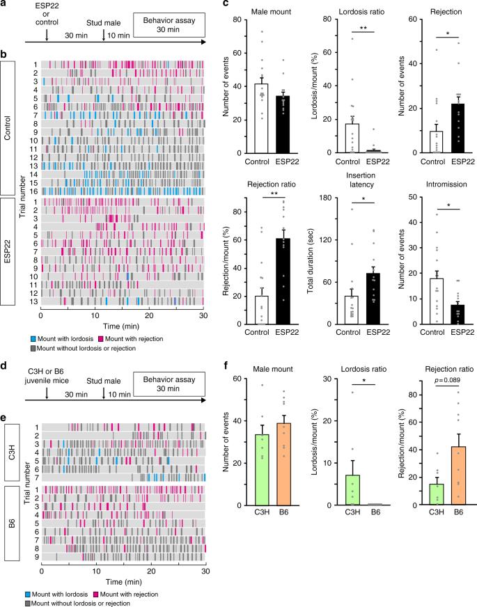 Sexual rejection via a vomeronasal receptor-triggered limbic circuit