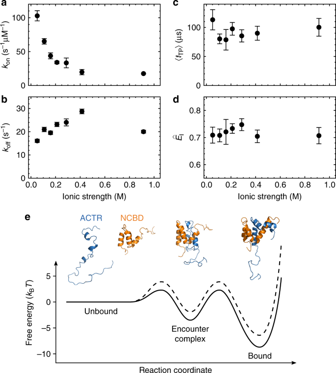 Transition Path Times Of Coupled Folding And Binding Reveal The Formation Of An Encounter Complex Nature Communications