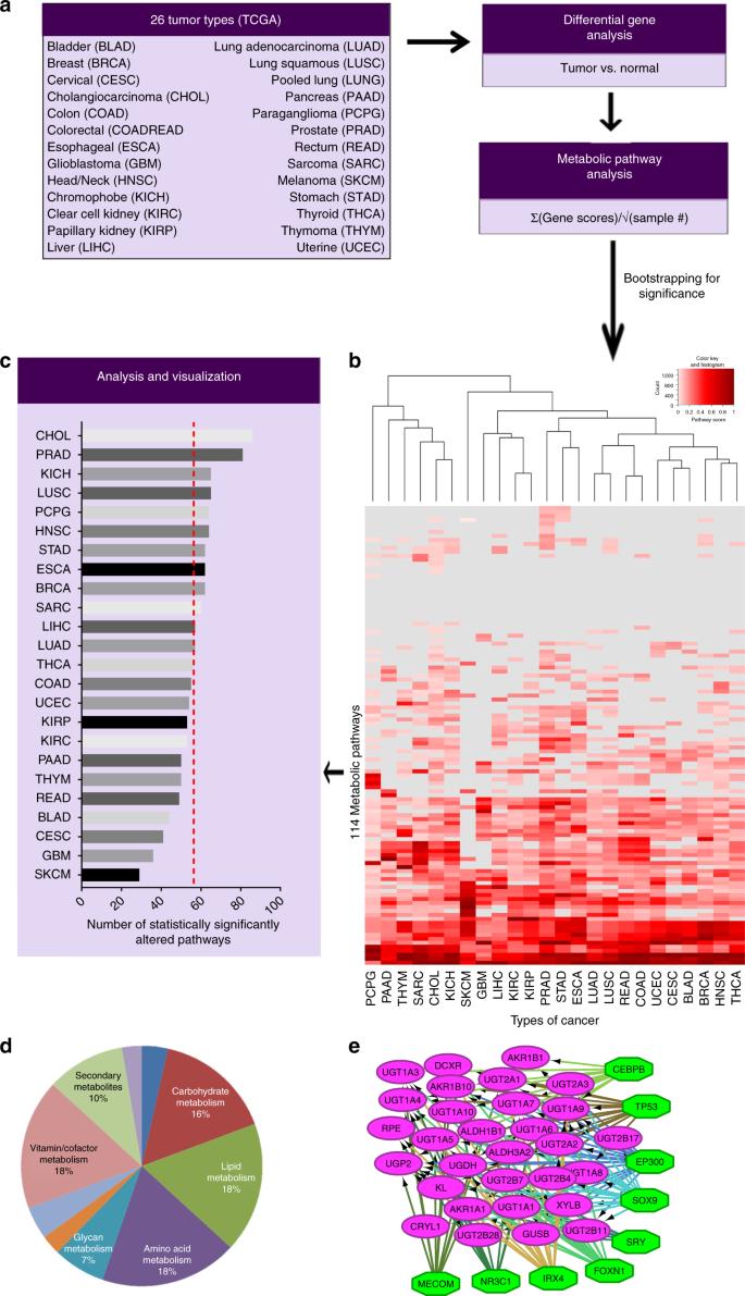 Pan-cancer analysis of transcriptional metabolic dysregulation using