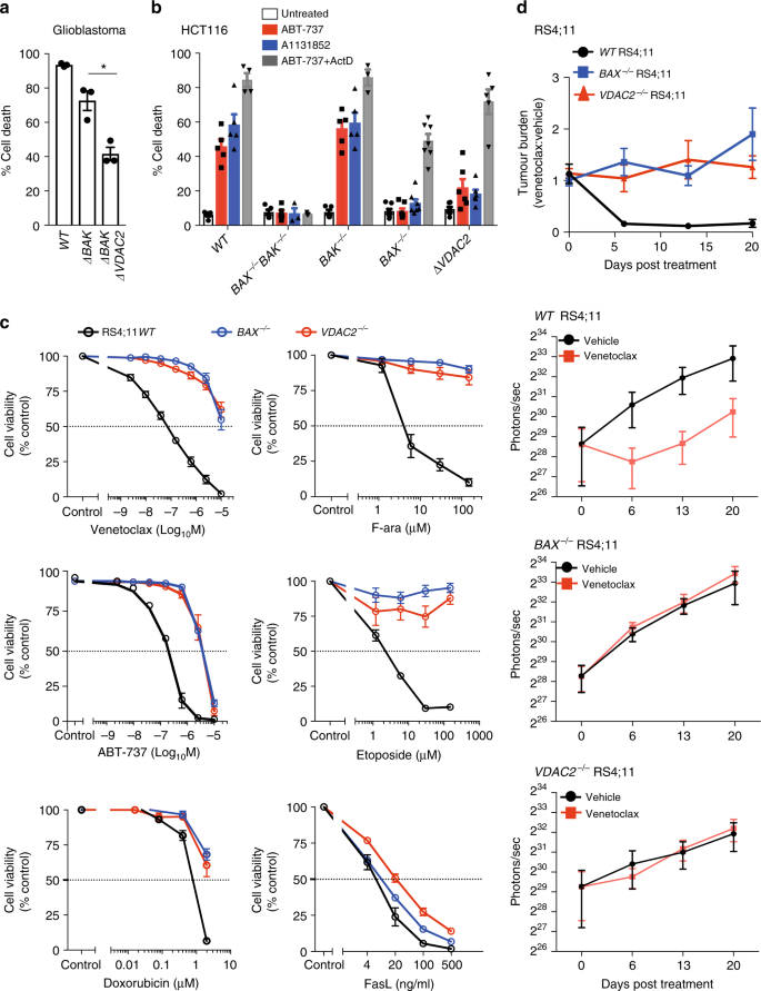 VDAC2 enables BAX to mediate apoptosis and limit tumor