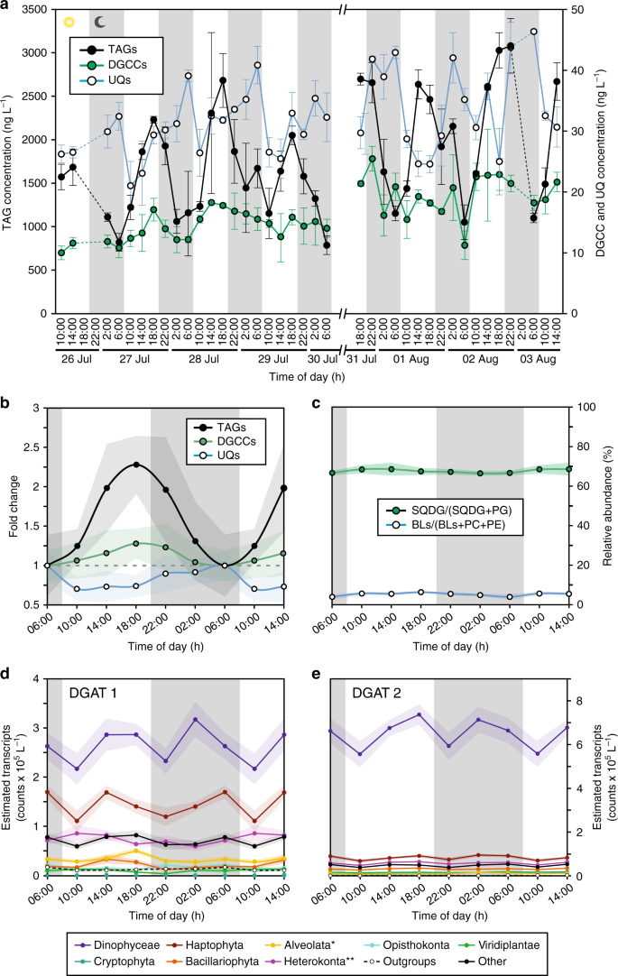 f8c8a80384f Daily changes in phytoplankton lipidomes reveal mechanisms of energy ...