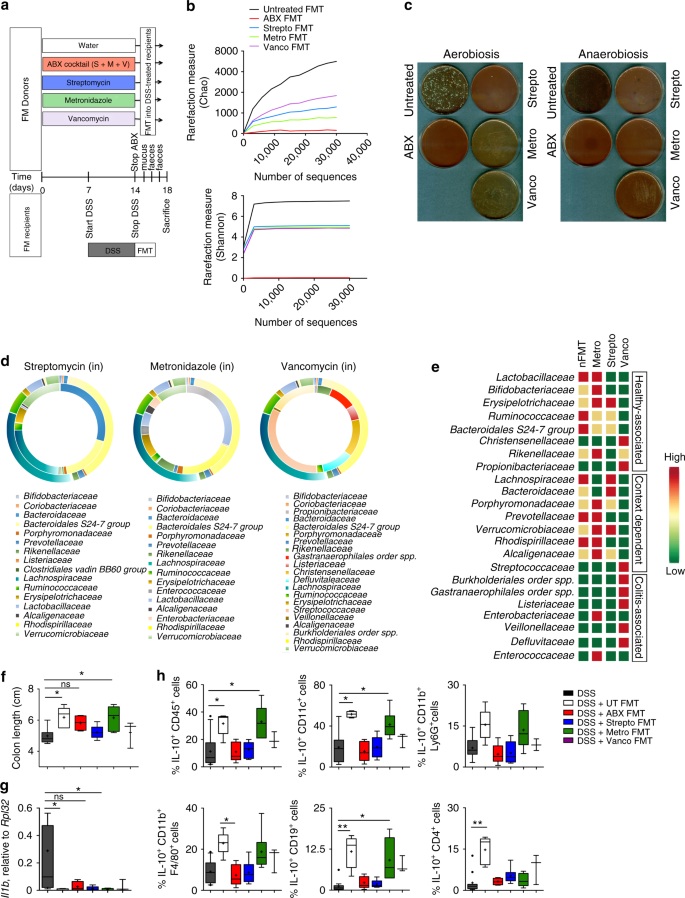 Therapeutic faecal microbiota transplantation controls intestinal