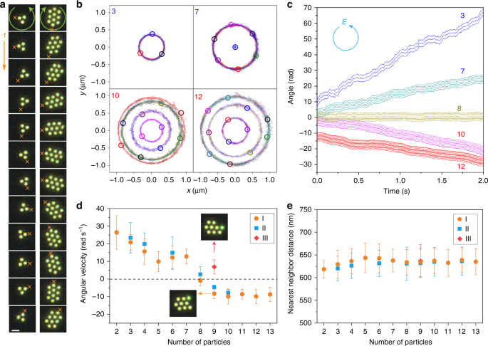 Crossover from positive to negative optical torque in mesoscale