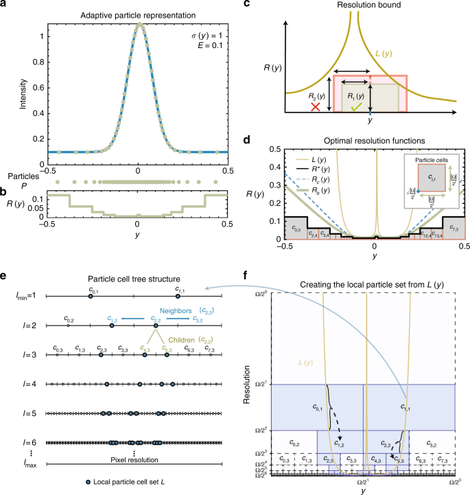 Adaptive particle representation of fluorescence microscopy images