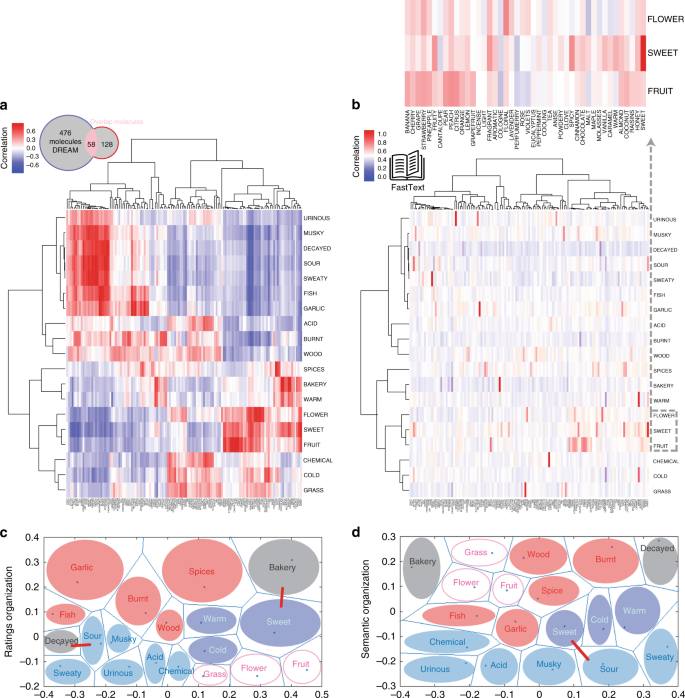 Predicting natural language descriptions of mono-molecular