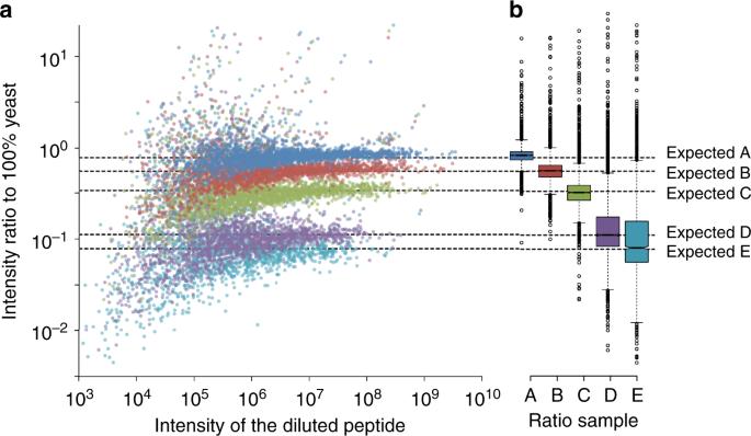 Chromatogram libraries improve peptide detection and quantification