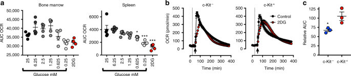 Tumour-elicited neutrophils engage mitochondrial metabolism to