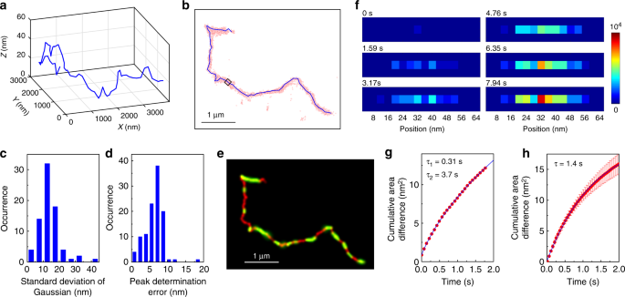 Entangled polymer dynamics beyond reptation | Nature Communications