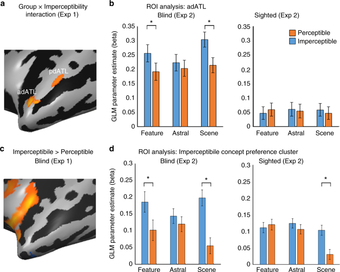 Neural representation of visual concepts in people born blind