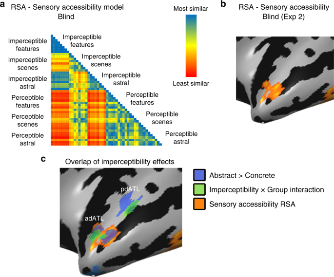 Neural representation of visual concepts in people born