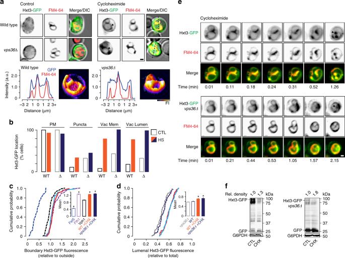 The intralumenal fragment pathway mediates ESCRT-independent