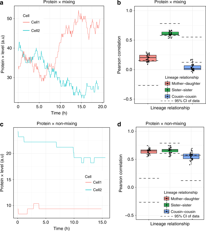 Hidden heterogeneity and circadian-controlled cell fate inferred