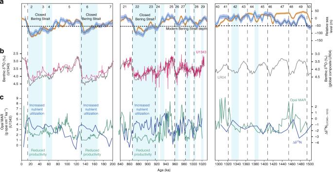 Closure of the Bering Strait caused Mid-Pleistocene