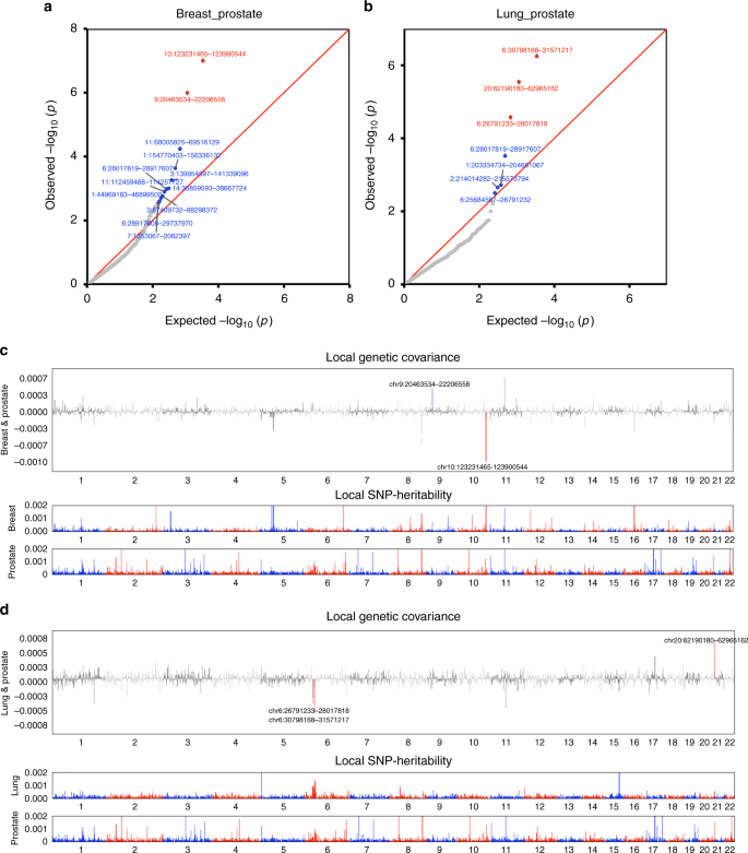Shared heritability and functional enrichment across six