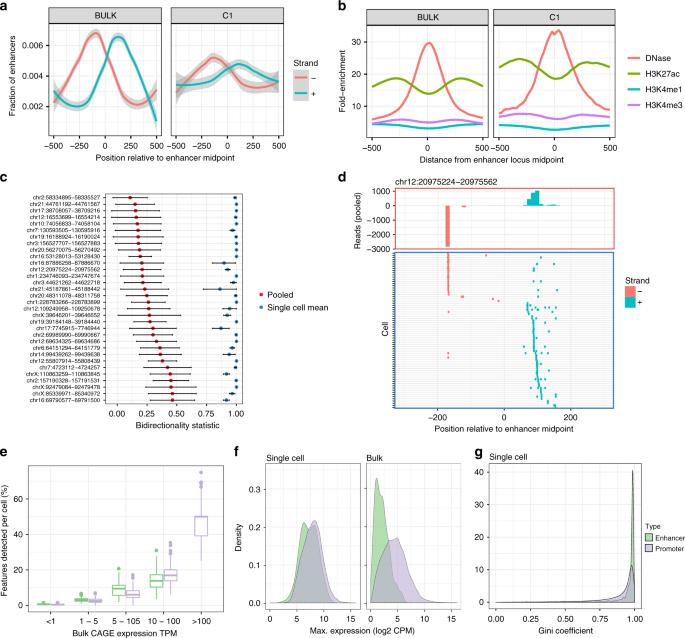 C1 CAGE detects transcription start sites and enhancer