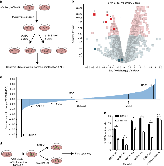 Sensitivity to splicing modulation of BCL2 family genes defines