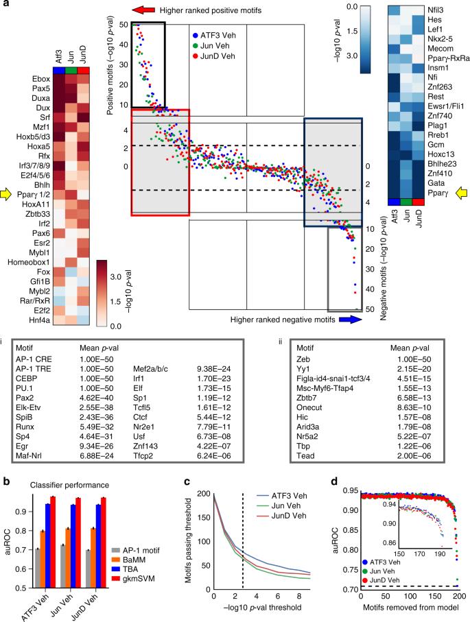 Diverse motif ensembles specify non-redundant DNA binding