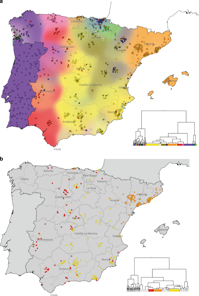 Map Of Spain 8th Century.Patterns Of Genetic Differentiation And The Footprints Of Historical