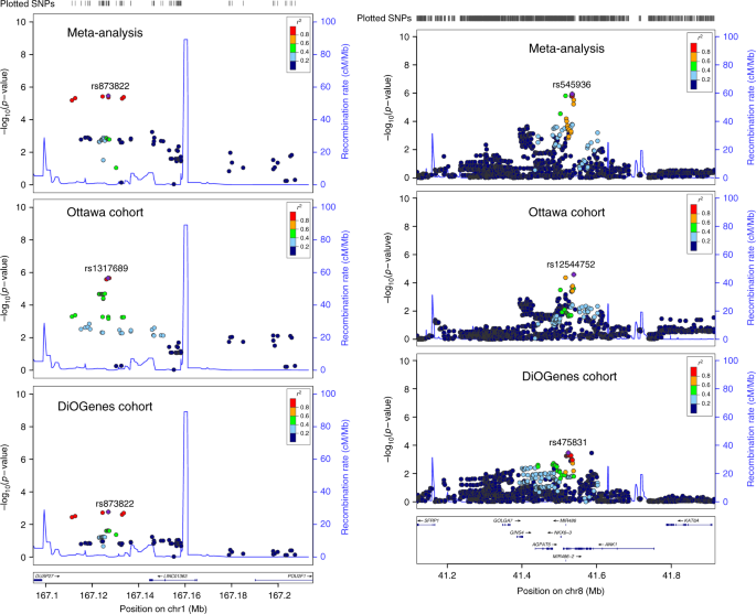 Genome-wide gene-based analyses of weight loss interventions