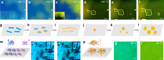 1D versus 2D cocrystals growth via microspacing in-air