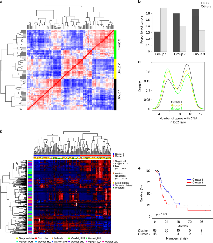 A Mathematical Descriptor Of Tumor Mesoscopic Structure From Computed Tomography Images Annotates Prognostic And Molecular Phenotypes Of Epithelial Ovarian Cancer Nature Communications