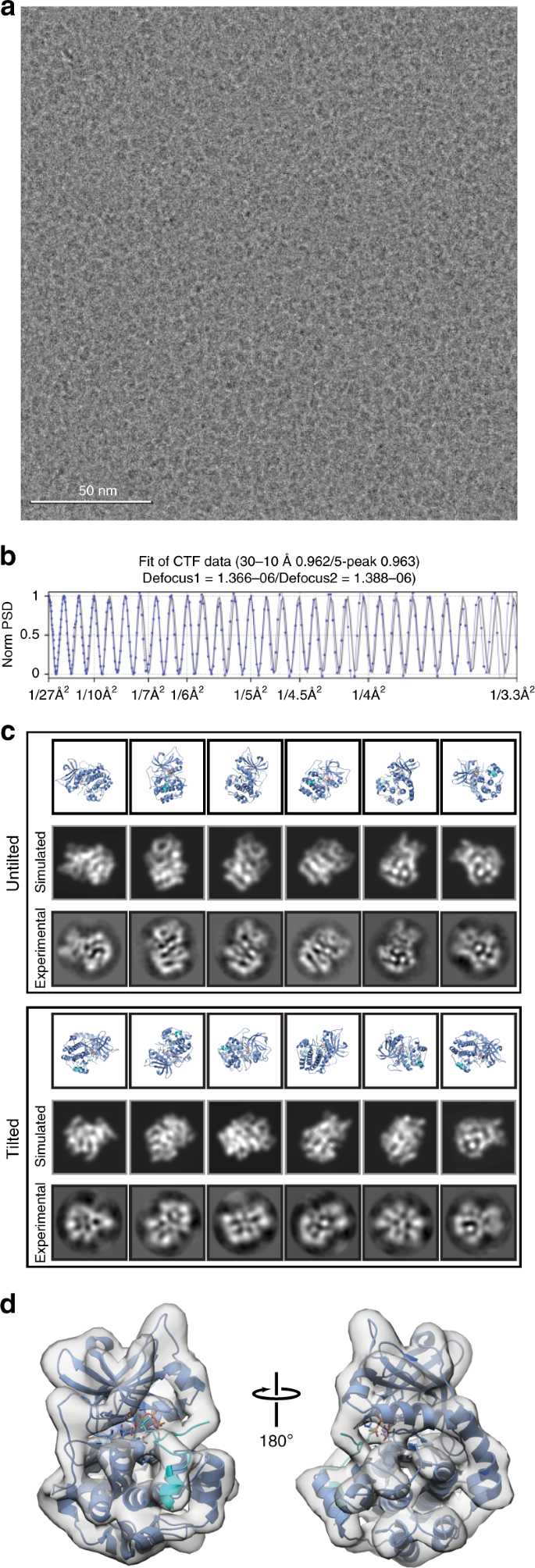 High-resolution structure determination of sub-100 kDa complexes