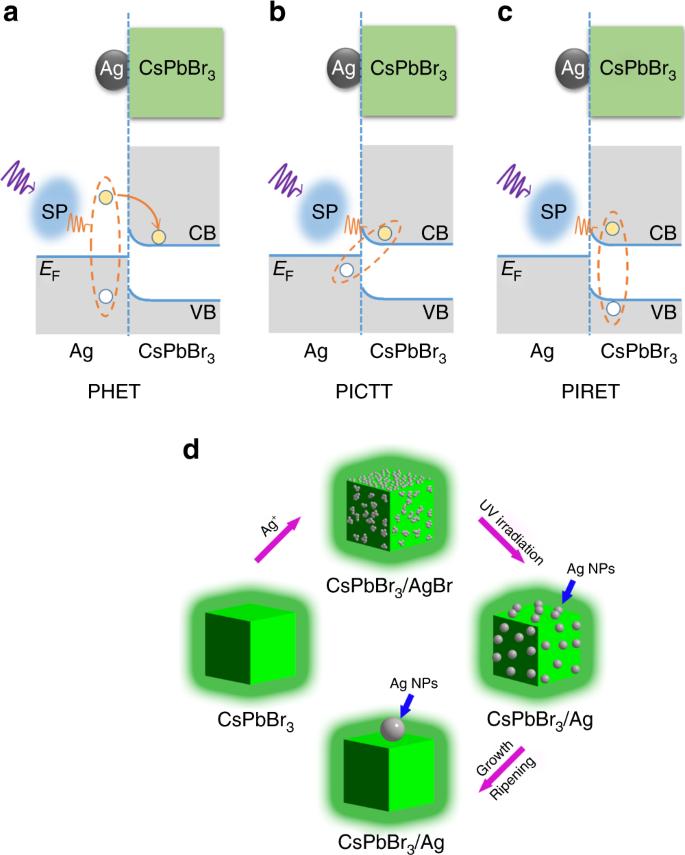 Efficient plasmon-hot electron conversion in Ag–CsPbBr 3 hybrid