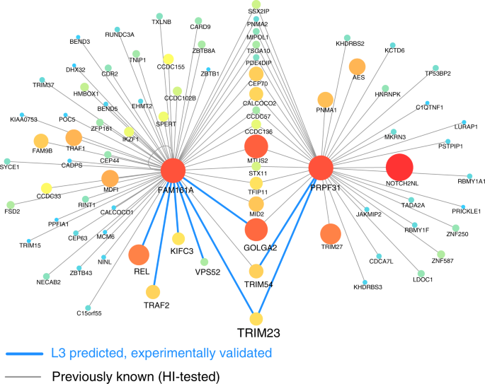 Network-based prediction of protein interactions | Nature Communications