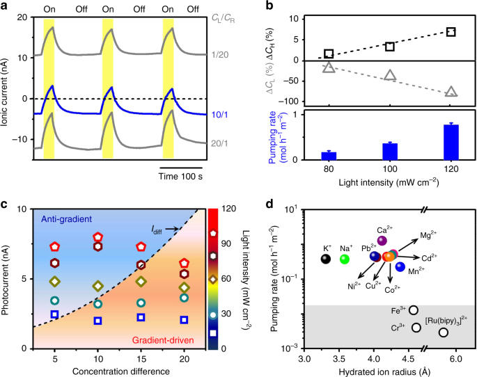 Photo-induced ultrafast active ion transport through