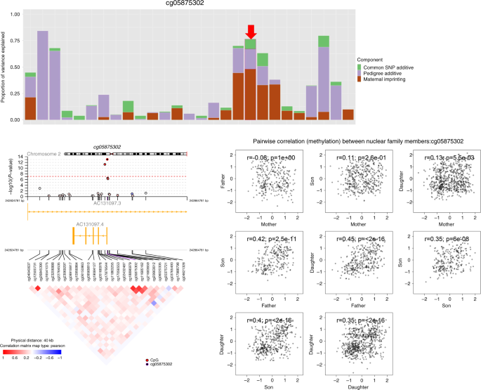 Parent of origin genetic effects on methylation in humans