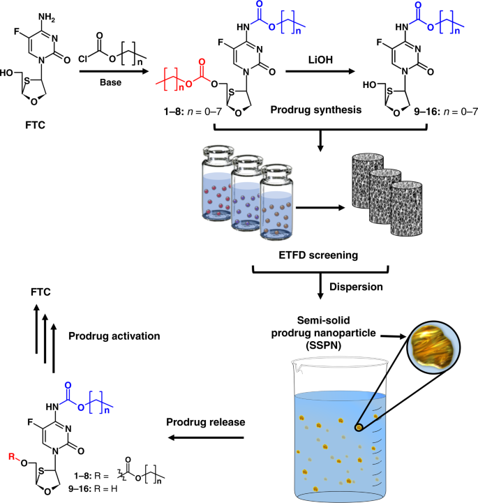 Semi-solid prodrug nanoparticles for long-acting delivery of