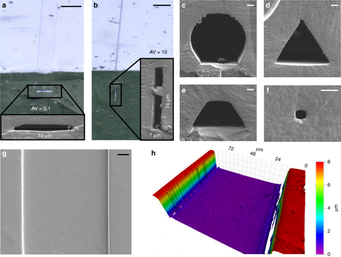 Fabrication of arbitrary three-dimensional suspended hollow