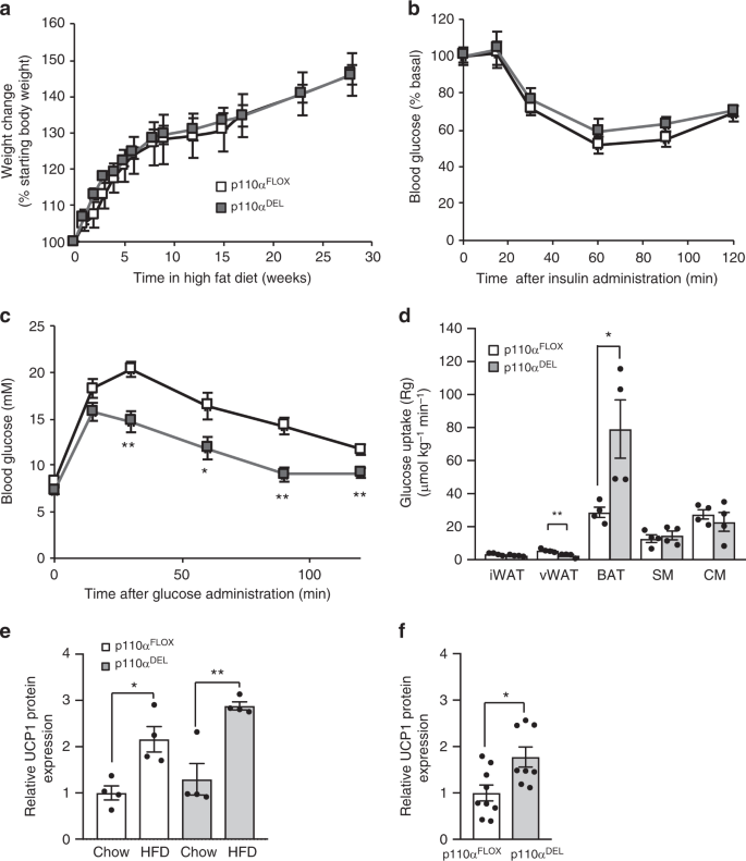 Enhanced β-adrenergic signalling underlies an age-dependent