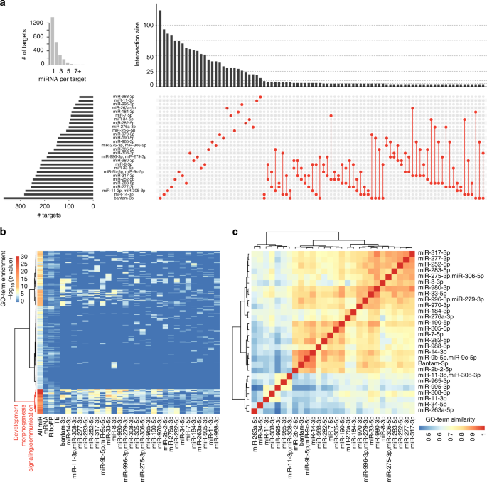 Global identification of functional microRNA-mRNA interactions in