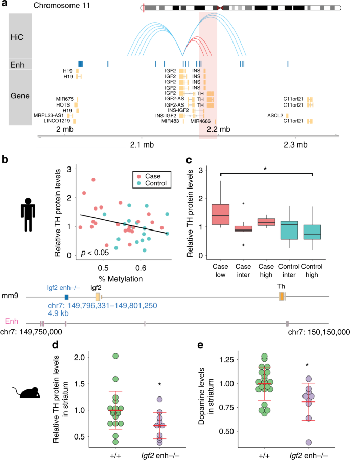 Differential methylation of enhancer at IGF2 is associated