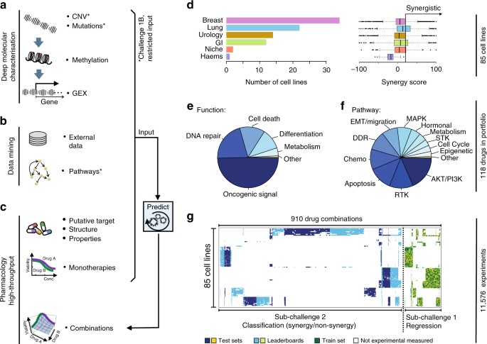 Community Assessment To Advance Computational Prediction Of Cancer Drug Combinations In A Pharmacogenomic Screen Nature Communications