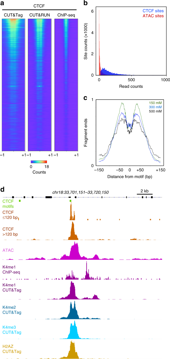 CUT&Tag for efficient epigenomic profiling of small samples