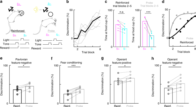 Dissociating task acquisition from expression during