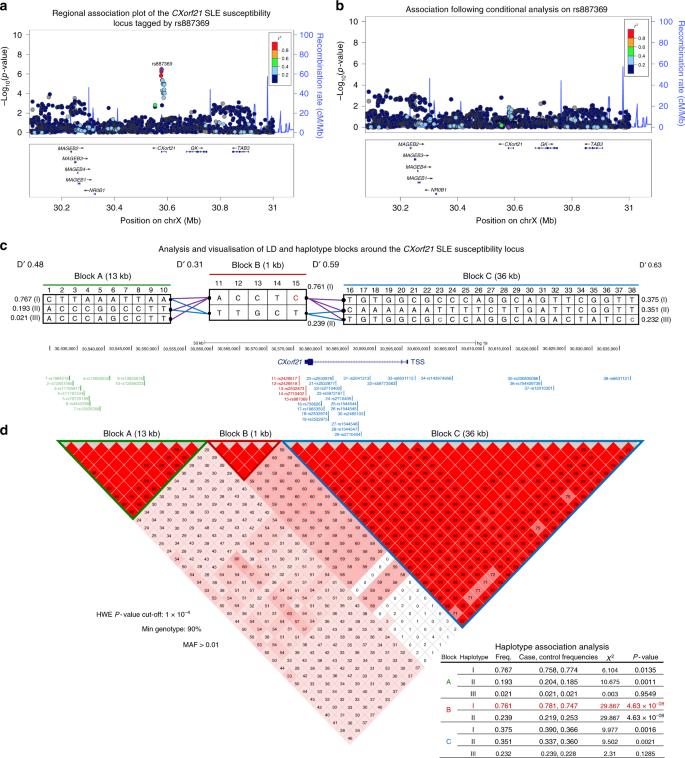 Interferon inducible X-linked gene CXorf21 may contribute to sexual di