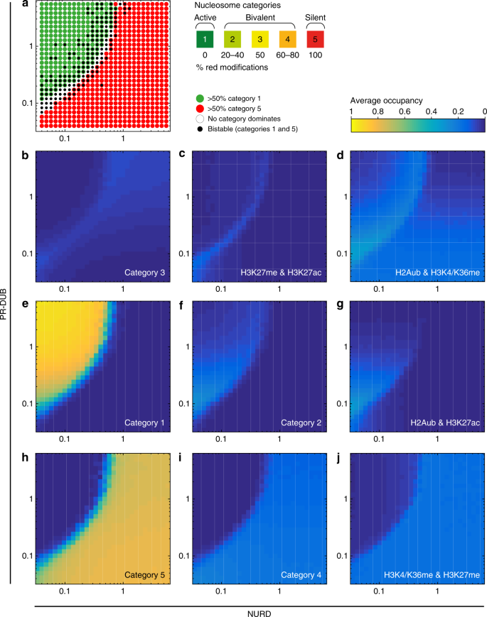 Theoretical analysis of Polycomb-Trithorax systems predicts