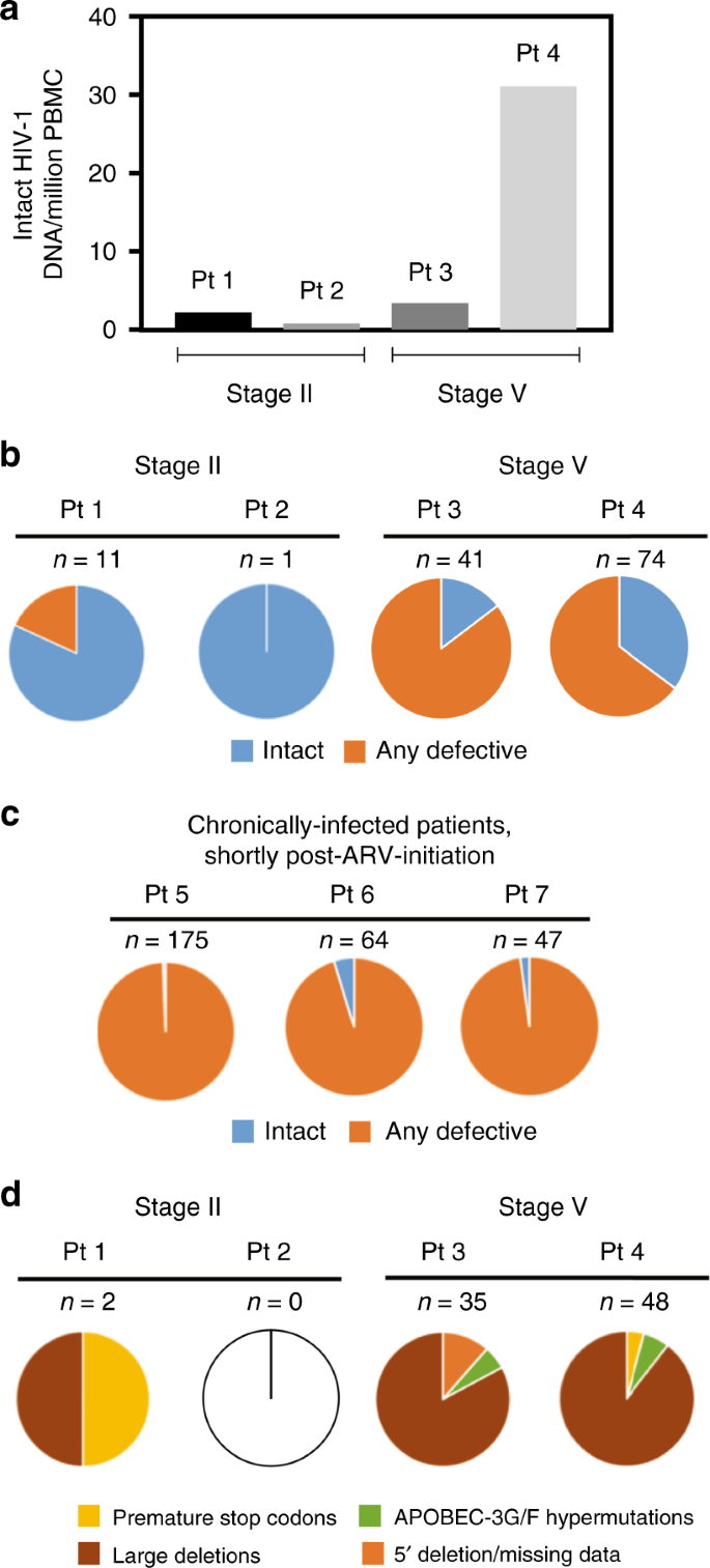 HIV-1 DNA sequence diversity and evolution during acute