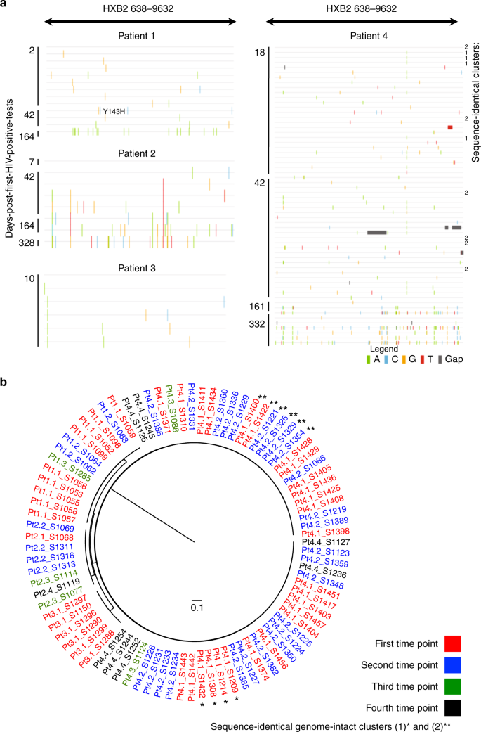 HIV-1 DNA sequence diversity and evolution during acute subtype C