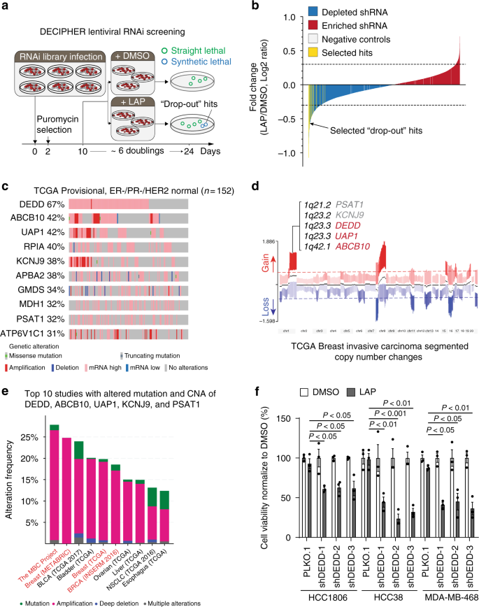 Death effector domain-containing protein induces vulnerability to
