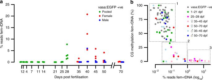 Zebrafish preserve global germline DNA methylation while sex