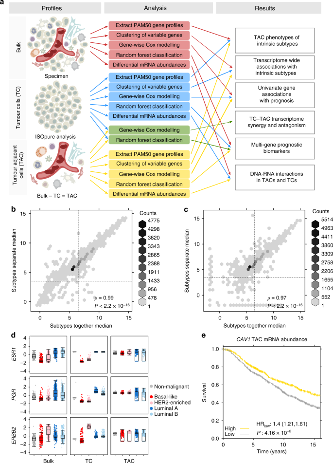 Landscape of transcriptomic interactions between breast cancer and its