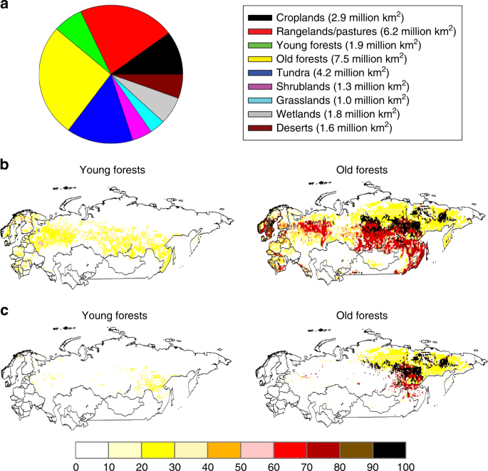 Future nitrogen availability and its effect on carbon sequestration in