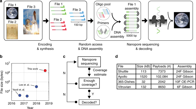 DNA assembly for nanopore data storage readout