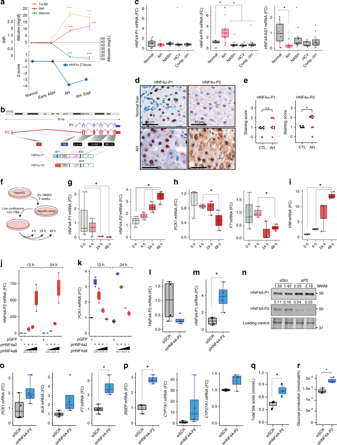 Defective Hnf4alpha Dependent Gene Expression As A Driver Of Hepatocellular Failure In Alcoholic Hepatitis Nature Communications