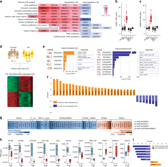 Defective HNF4alpha-dependent gene expression as a driver of