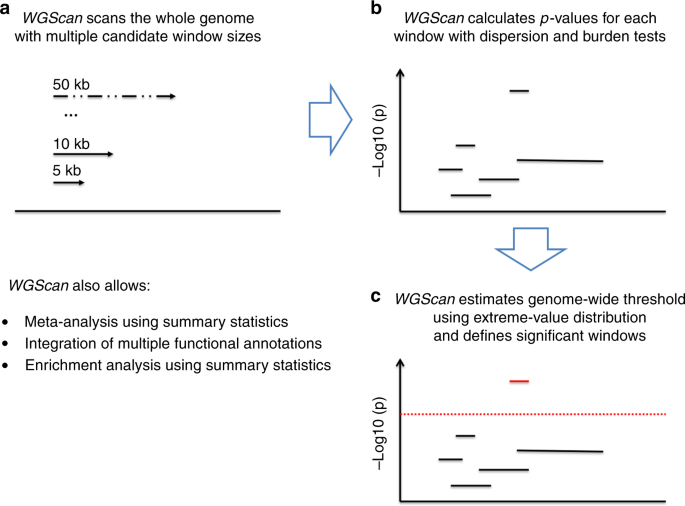 A genome-wide scan statistic framework for whole-genome sequence data